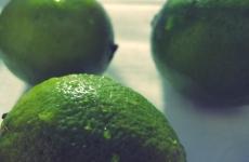 Guacamole Rezept Segeln Camping Proviant