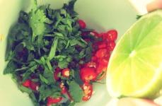 Segelrezepte Thai