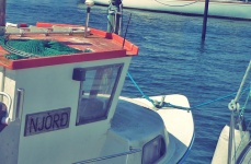 Aarö Segel Hafen