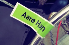 Årø Havn Segeln