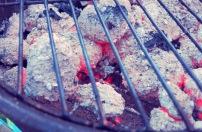 BBQ Segel Rezepte