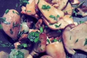 Steinpilz Rezept Bordküche Segeln