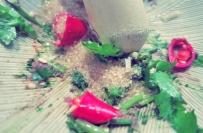Bordrezept Salat Segeln Kombüse