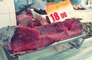 Thunfisch tarifa Segeln Kombüse
