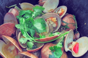 Muscheln Rezept Kombüse Segeln