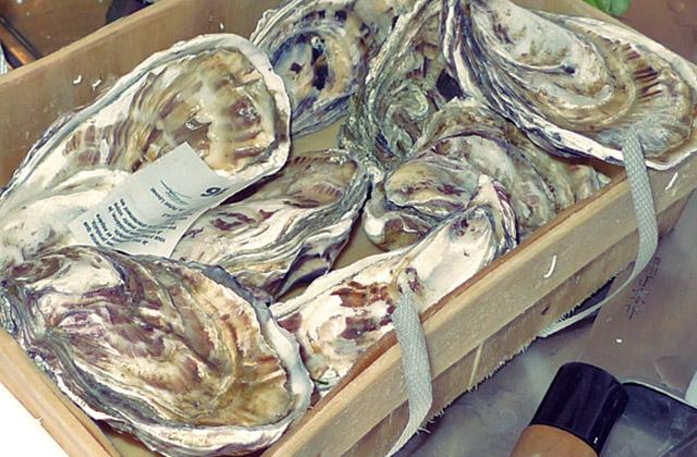 Austern im Körbchen mit Packzettel