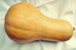 Kartoffelstampf Rezept für Segeln und Kombüse