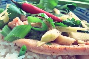 Ingwerhühnchen vietnamesisch Segelrezept für Kombüse oder Camping