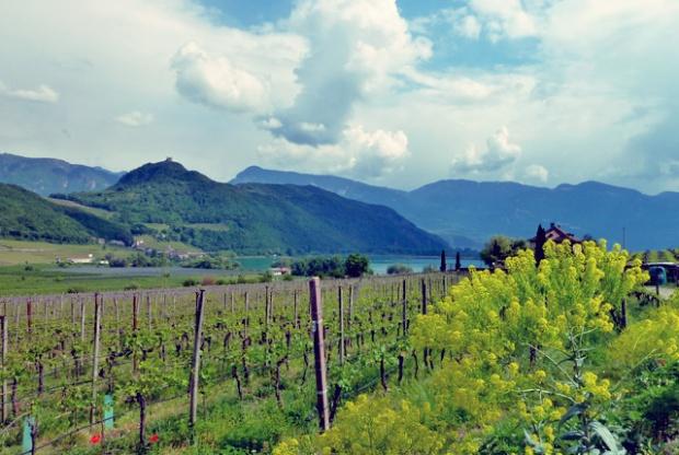 Speck Südtirol Proviant für das Segeln und Camping