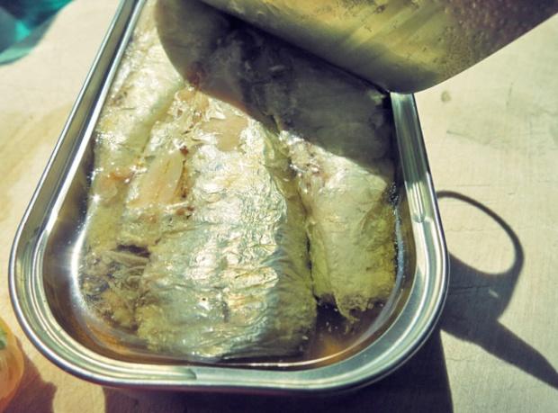 Ölsardine, was kochen beim Segeln und Camping