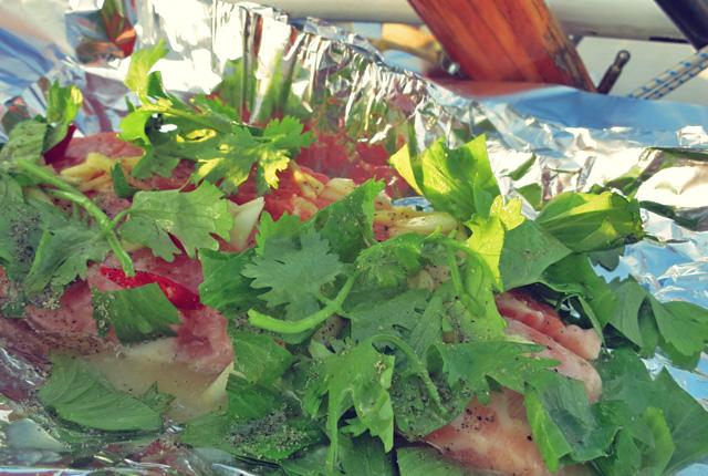 Lachs, frischer Fisch Segelrezept, BBQ und Outdoor