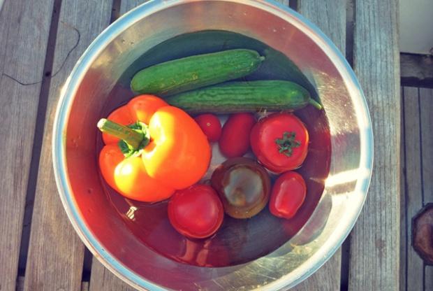 Salat, Rezepte fürs Segeln, Outdoor und Camping