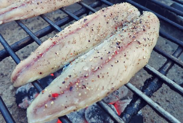 Makrelen vom Grill. Was grillen oder kochen beim Segeln oder Camping