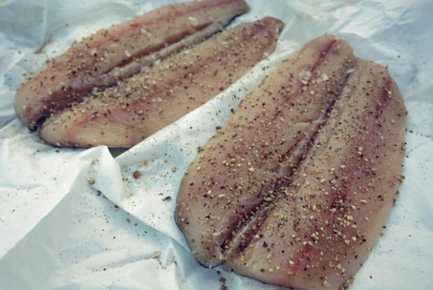 Makrelen. Was kochen oder grillen beim Seglen oder Camping?