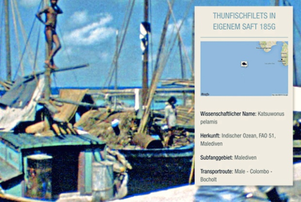 Fisch Frikadellen Bord-Rezepte Segeln Thunfisch