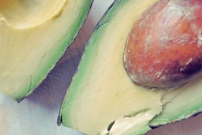 Segel-Rezept Wintersalat mit Orangen und Avocado für die Kombüse
