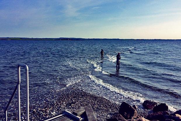 Avernakø Angler auf Sandbank!