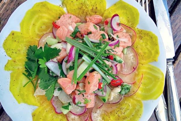 Ceviche fertig auf Salatbeet Rezept Segeln und Bordküche