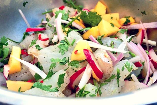Bordküche: Ceviche mit Mango und Kabeljau