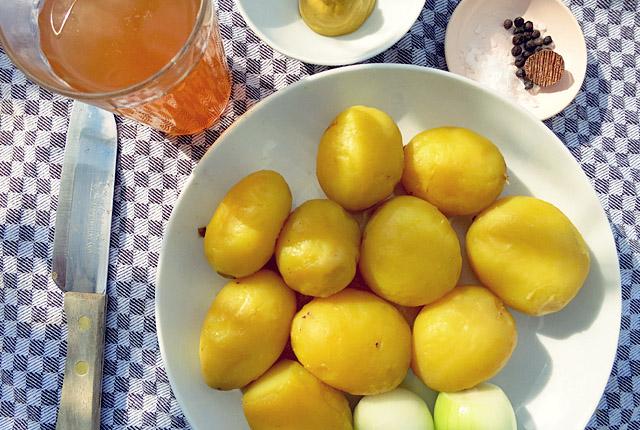 Bord-Rezept: Kartoffel-Salat in Abendsonne