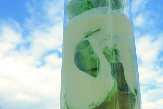 Schnelles Bordrezept Geeiste Gurkensuppe mit Gin
