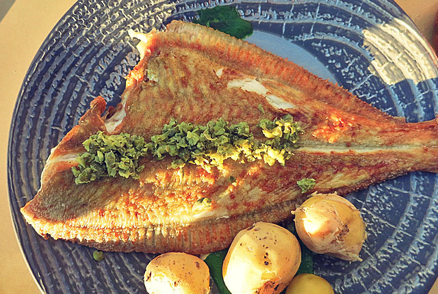 Brasserie Svanen Middelfart, Scholle