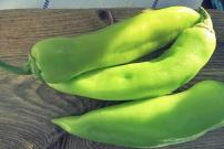 Grüne türkische Paprika für Brotsalat Bordrezept