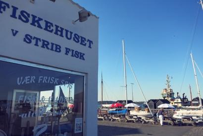 Segler und Hafenkneipen: Strib Fisk Middelfart Gammelhafen