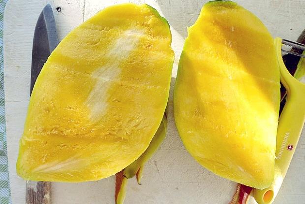 Mango richtig lagern Kombüse und Pantry