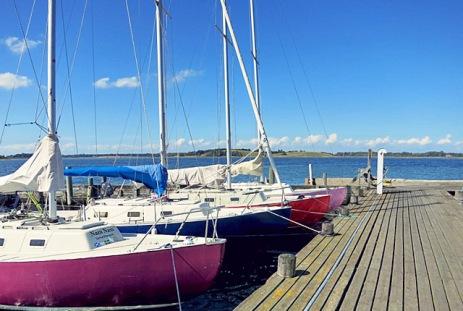 Langoer Hafen Dänemark Die See kocht