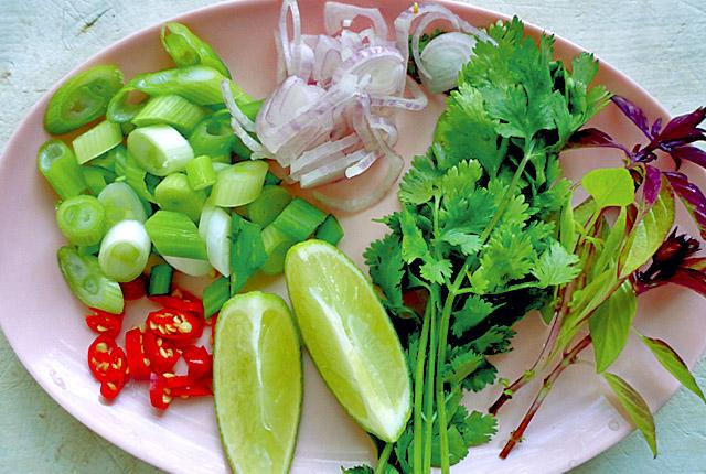 Pho Bo Reisnudelsuppe Vietnam mit Rind Zutaten