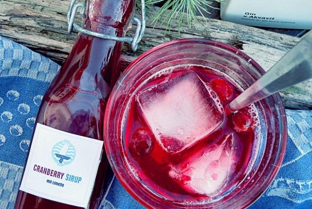 Cranberry oder Moosbeeren Sirup DIY DieSee kocht
