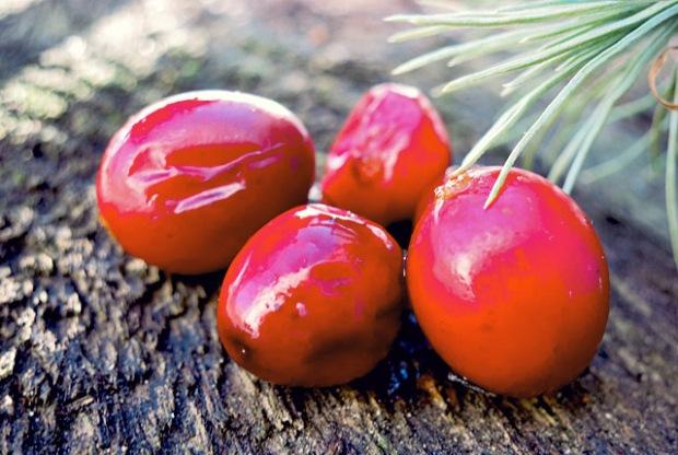 Cranberries gekocht für Sirup
