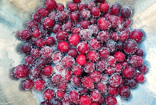 Cranberry oder Moosbeeren Sirup Rezept selbstgemacht