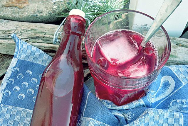 Cranberry Sirup selbstgemacht Kochen an Bord