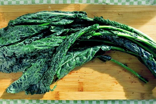 Palmkohl oder Schwarzkohl Zutat für Ribollta