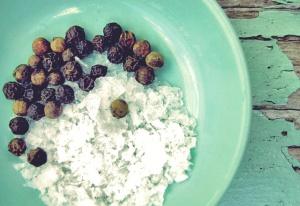 Food Fotografie für Blogs
