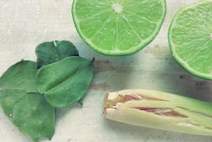 Das Aromaten-Trio Limette, Limettenblätter Zitronengras