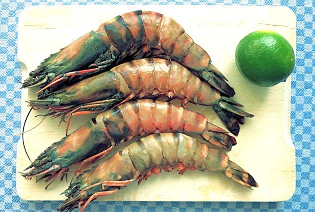 XXL Shrimps für Tom Yam Gung Thaisuppe