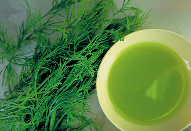 Dill-infused-Oil selbstmachen Die See kocht