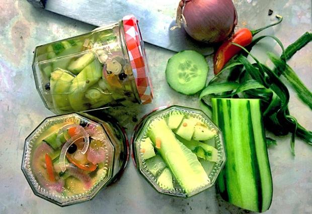 Drei Zimmer Küche Proviant : Salatgurken einlegen ohne kochen u2013 heute wird leichter proviant
