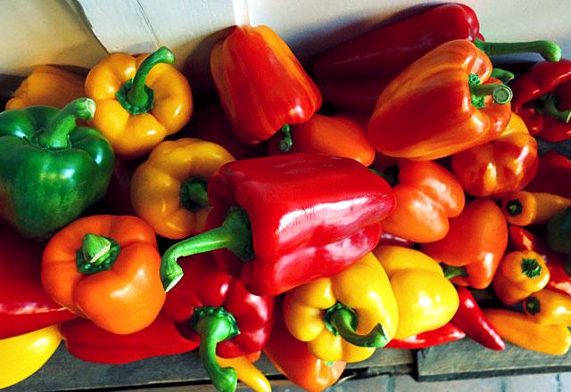 Paprika Saison beginnt ab August