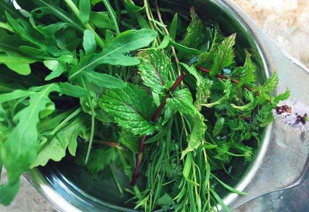Grüner Couscous Salat Kräuter