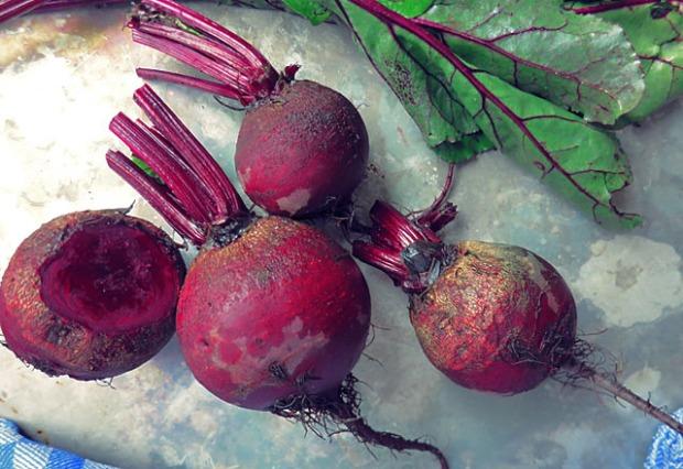 Rote Bete Knollen roh blaetter gewaschen
