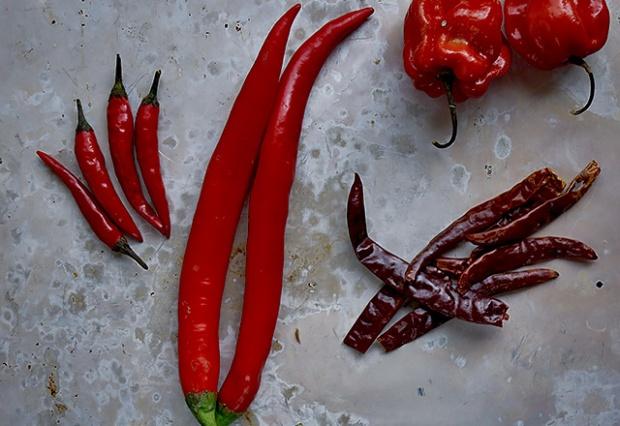 Chili von mild bis mega scharf