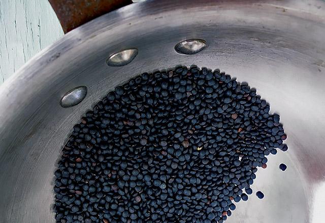 blauschwarze kleine Belugalinsen trocken