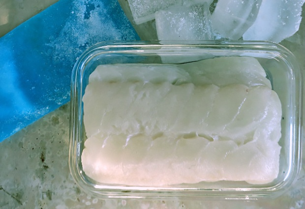 Skrei richtig aufbewahren auf Eis