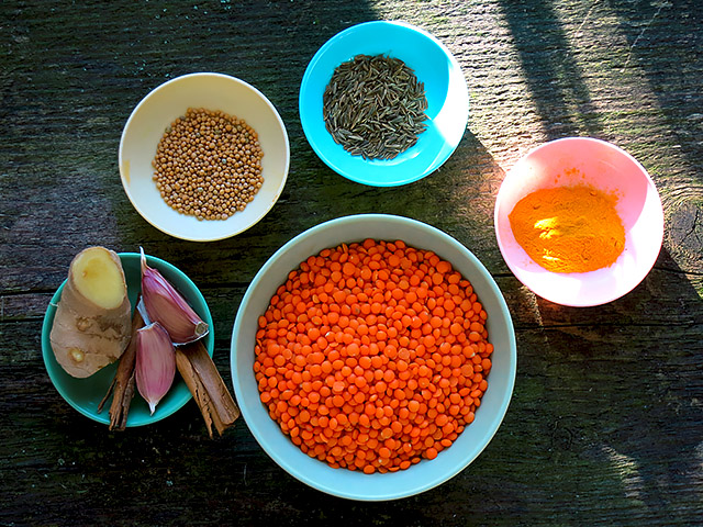 Rasta Dal Ayurvedisch mit roten Linsen