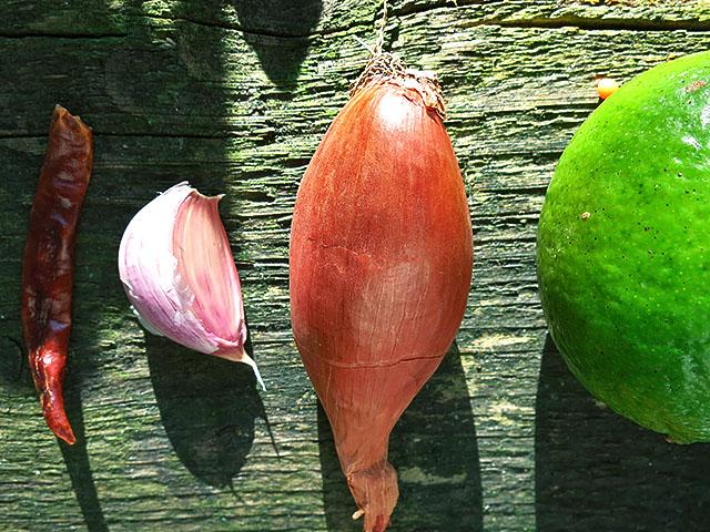 Die Pitta Gewuerze: Chili Knoblauch Zwiebel Limette