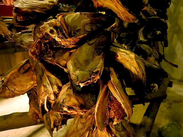 Stockfisch Fischköpfe Lofoten